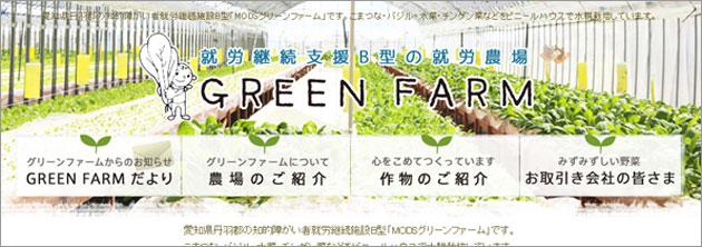 愛知県丹羽郡の知的障がい者就労継続施設B型「MODSグリーンファーム」です。こまつな・バジル・水菜・チンゲン菜などをビニールハウスで水耕栽培しています。